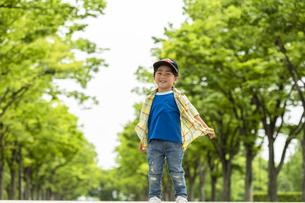 並木道に立つ男の子の写真素材 [FYI04860360]