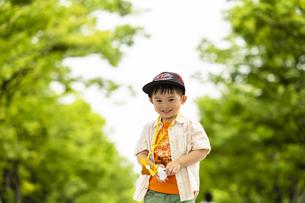 並木道に立つ男の子の写真素材 [FYI04860374]