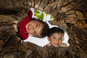木の穴をのぞく子供の写真素材 [FYI04860396]