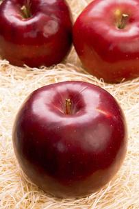 りんご 紅玉の写真素材 [FYI04860654]
