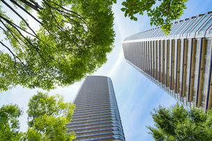 緑に囲まれたタワーマンションの写真素材 [FYI04860699]