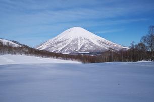 羊蹄山と雪原の写真素材 [FYI04861182]