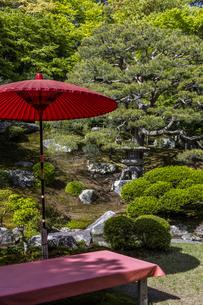 旧竹林院 庭園の写真素材 [FYI04861370]
