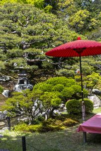 旧竹林院 庭園の写真素材 [FYI04861371]