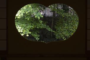 地蔵院 猪目窓の写真素材 [FYI04861381]