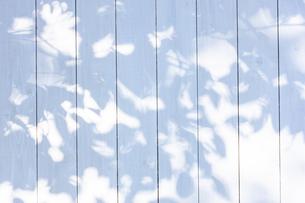 白い板塀に映る影の写真素材 [FYI04861548]