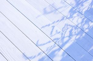 白い板塀に映る影の写真素材 [FYI04861556]