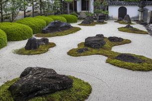 妙蓮寺 石庭の写真素材 [FYI04861921]
