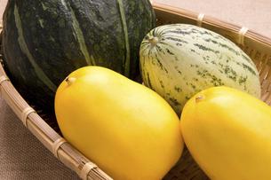 夏野菜の写真素材 [FYI04861999]