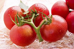 フルーツトマトの写真素材 [FYI04862006]