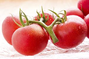 フルーツトマトの写真素材 [FYI04862007]