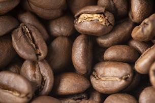 コーヒー豆の写真素材 [FYI04862241]