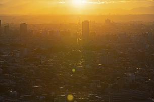 夕方、黄金色に染まる東京の街並みの写真素材 [FYI04862257]