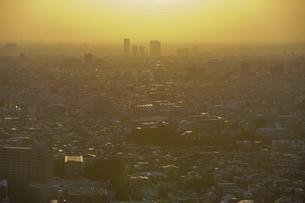 夕方、黄金色に染まる東京の街並みの写真素材 [FYI04862258]