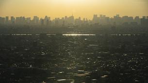 夕方、黄金色に染まる東京の街並みの写真素材 [FYI04862259]