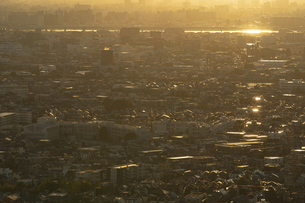 夕方、黄金色に染まる東京の街並みの写真素材 [FYI04862261]