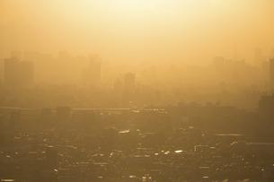 夕方、黄金色に染まる東京の街並みの写真素材 [FYI04862263]