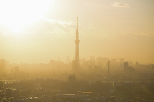 東京の夕方(東京スカイツリー)の写真素材 [FYI04862281]