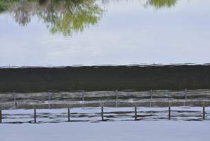 川面に映り込む周辺の木々や橋等の光景の写真素材 [FYI04862430]