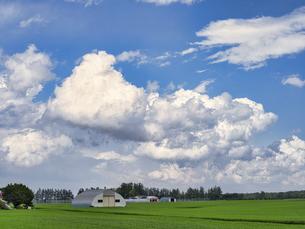 青空と雲の写真素材 [FYI04862560]
