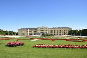 シェーンブルン宮殿と庭園の写真素材 [FYI04862563]