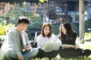 外でパソコンを開いて勉強をしている学生3人の写真素材 [FYI04862596]