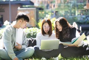 外でパソコンを開いて勉強をしている学生3人の写真素材 [FYI04862598]