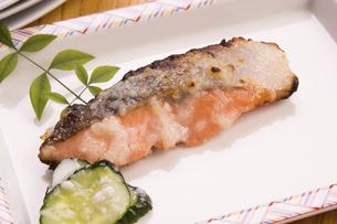 鮭の塩麹焼きの写真素材 [FYI04862749]