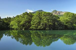夏の五色沼(毘沙門沼)と磐梯山 福島県北塩原村の写真素材 [FYI04862820]