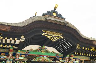 新緑の香取神宮の写真素材 [FYI04862903]