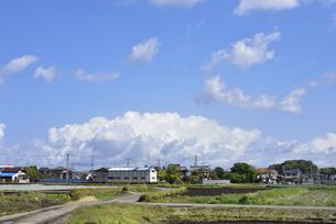 畑が並ぶ東京近郊の青空の上空に浮かぶ白い雲と民家などの建物の写真素材 [FYI04862945]