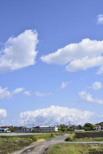 畑が並ぶ東京近郊の青空の上空に浮かぶ白い雲と民家などの建物の光景の写真素材 [FYI04862946]