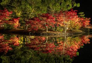 福島県 白水阿弥陀堂の写真素材 [FYI04863068]