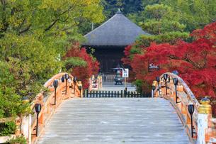 福島県 白水阿弥陀堂の写真素材 [FYI04863076]