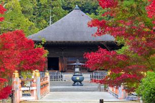 福島県 白水阿弥陀堂の写真素材 [FYI04863121]