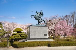 霞城公園最上義光騎馬像と桜の写真素材 [FYI04863194]