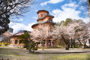 桜と山形市郷土館の写真素材 [FYI04863195]