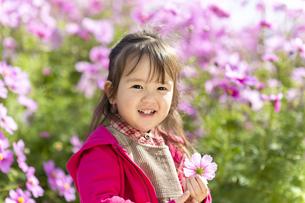 コスモス畑の女の子の写真素材 [FYI04863269]