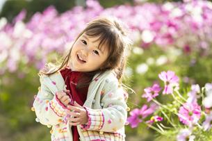 コスモス畑の女の子の写真素材 [FYI04863279]