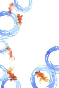 金魚と水紋の水彩画 はがきサイズのイラスト素材 [FYI04863301]
