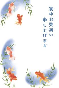 金魚と水草の暑中お見舞いのイラスト素材 [FYI04863303]