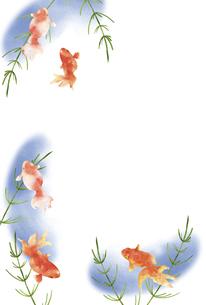 金魚と水草の水彩画 はがきサイズのイラスト素材 [FYI04863304]