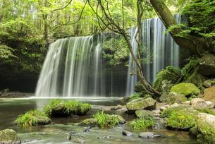 鍋ヶ滝の写真素材 [FYI04863343]