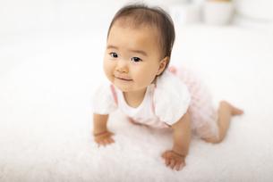 ハイハイする赤ちゃんの写真素材 [FYI04863372]