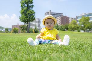 公園で遊ぶ子供の写真素材 [FYI04863396]