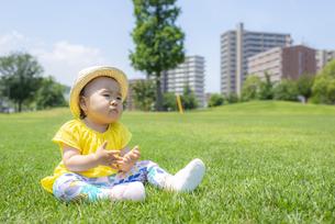 公園で遊ぶ子供の写真素材 [FYI04863401]