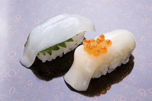 にぎり寿司 イカのにぎり二種の写真素材 [FYI04863501]