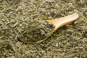 煎茶の茶葉の写真素材 [FYI04863611]