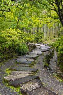 松花堂 飛石の写真素材 [FYI04863681]