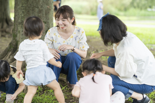 公園でどんぐり拾いをする子供たちの写真素材 [FYI04863891]